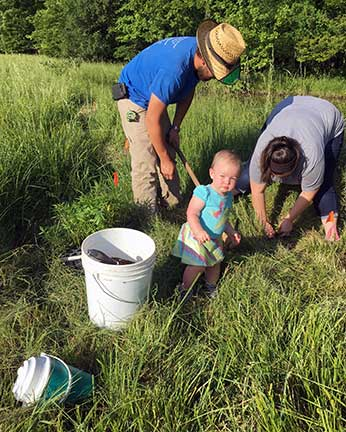 Fourteen-month-old Elizabeth Rakes works on the pollinator habitat along with her parents, Cody and Angela Rakes.