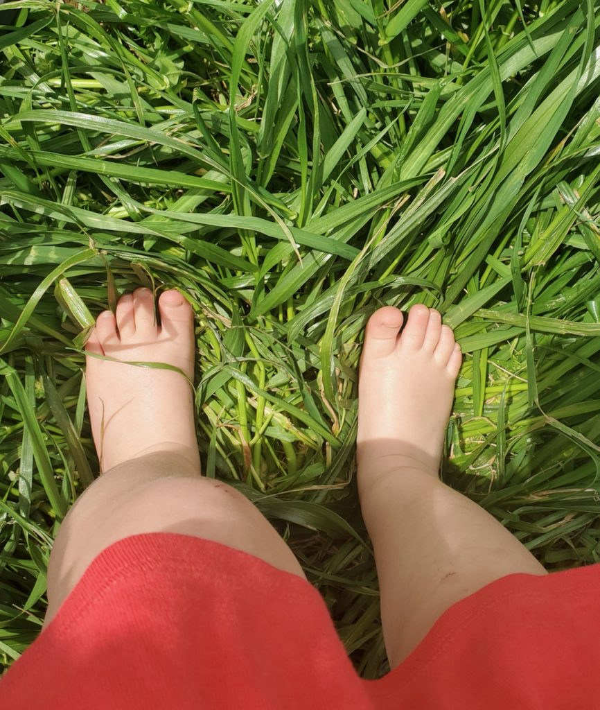 Child's bare feet in long green grass.