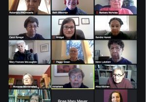 Screenshot of online meeting participants