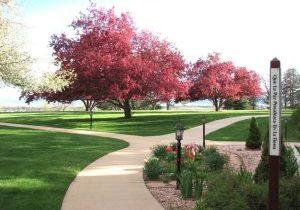 flowering-trees-garden-PeacePole